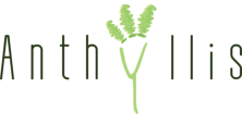 Anthyllis